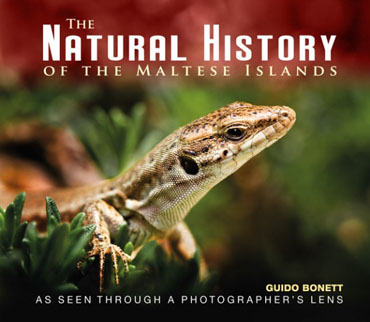 The Natural History of the Maltese Islands BDL Books Cover