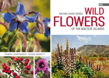 Wild-Flowers-of-the-Maltese-Islands BDL Books Cover